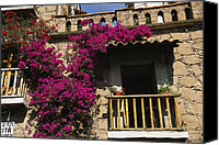 Balconies Canvas Prints - Bougainvillea Flowers On The Balcony Canvas Print by Gina Martin
