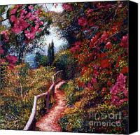 Fences Canvas Prints - Bougainvillea Path Tuscany Canvas Print by David Lloyd Glover