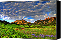 Colorado Mountains Canvas Prints - Boulder Spring Wildflowers Canvas Print by Scott Mahon