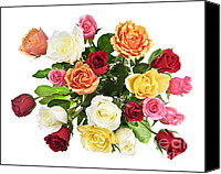 Gentle Canvas Prints - Bouquet of roses from above Canvas Print by Elena Elisseeva