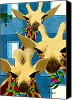 Giraffes Canvas Prints - Box Lunch Canvas Print by Tom Dickson