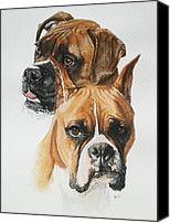 Pets Canvas Prints - Boxers Canvas Print by Barbara Keith