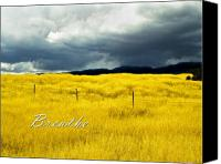 Breathe Canvas Prints - Breathe Canvas Print by Lou  Novick