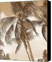 Tropical Photographs Canvas Prints - Breeze Canvas Print by Athala Carole Bruckner