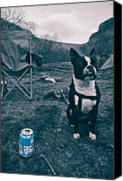 Camping Canvas Prints - BrewDog Bull Canvas Print by Justin Albrecht