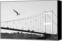 Turkey Photo Canvas Prints - Bridge And Seagull, Bosphorus, Istanbul, Turkey Canvas Print by Gulale