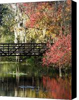 Florida Bridge Canvas Prints - Bridge at Sawgrass Lake Park Canvas Print by Rose  Hill