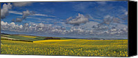 Fam Canvas Prints - Brighton Yellow Fields Canvas Print by Phil Clements