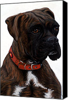 Boxer Pastels Canvas Prints - Brindle Boxer Canvas Print by Michelle Harrington