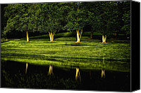 Setting Canvas Prints - Broemmelsiek Park Green Canvas Print by Bill Tiepelman