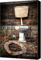 Shed Canvas Prints - Broken Toilet Canvas Print by Carlos Caetano