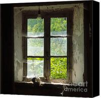 Derelict Canvas Prints - Broken window. Canvas Print by Bernard Jaubert