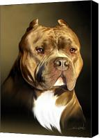 Pit Canvas Prints - Brown and White Pit Bull by Spano Canvas Print by Michael Spano