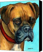 Boxer Canvas Prints - Brown Boxer on Turquoise Canvas Print by Dottie Dracos