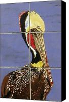 Beaches Ceramics Canvas Prints - Brown Pelican Canvas Print by Dy Witt