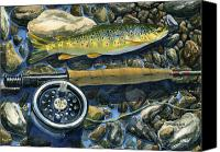 Sports Art Painting Canvas Prints - Brown Trout Rush Creek Canvas Print by Mark Jennings