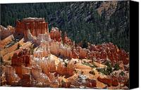 Sand Canvas Prints - Bryce Canyon  Canvas Print by Jane Rix