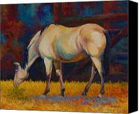Foal Painting Canvas Prints - Buckskin Canvas Print by Marion Rose