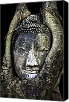 Ruin Digital Art Canvas Prints - Buddha Head in Banyan Tree Canvas Print by Adrian Evans