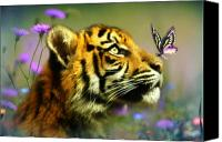 Cub Canvas Prints - Buddy and the Butterfly Canvas Print by Trudi Simmonds