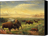 Buffalo Painting Canvas Prints - Buffalo Fox Great Plains American americana historic oil painting  Canvas Print by Walt Curlee