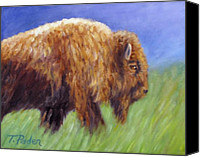 Buffalo Painting Canvas Prints - Buffalo in Spring Canvas Print by Theresa Paden