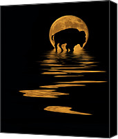 Buffalo Mixed Media Canvas Prints - Buffalo In The Moonlight Canvas Print by Shane Bechler