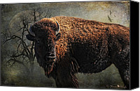Photomanipulation Photo Canvas Prints - Buffalo Moon Canvas Print by Karen Slagle