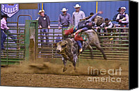 Bulls Photo Canvas Prints - Bull Rider 1 Canvas Print by Sean Griffin