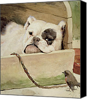 Windsor Canvas Prints - Bulldog Canvas Print by Cecil Charles Windsor Aldin
