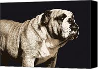 Canine  Canvas Prints - Bulldog Spirit Canvas Print by Michael Tompsett