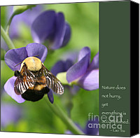 Zen Words Of Wisdom Canvas Prints - Bumble Bee with Zen Quote Canvas Print by Heidi Hermes