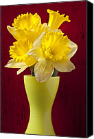 Vases Canvas Prints - Bunch Of Daffodils Canvas Print by Garry Gay