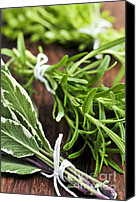 Spice Canvas Prints - Bunches of fresh herbs Canvas Print by Elena Elisseeva