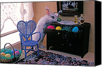 Drawers Canvas Prints - Bunny in small room Canvas Print by Garry Gay