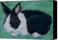 Rabbit Pastels Canvas Prints - Bunny one Canvas Print by Abbe Nelson