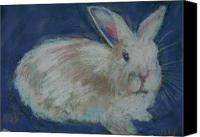 Rabbit Pastels Canvas Prints - Bunny two Canvas Print by Abbe Nelson