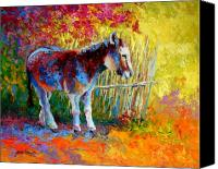 Animals Tapestries Textiles Canvas Prints - Burro And Bouganvillia Canvas Print by Marion Rose