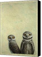 Funny Drawings Canvas Prints - Burrowing Owls Canvas Print by James W Johnson