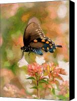 Pipevine Swallowtail Butterfly Digital Art Canvas Prints - Butterfly Dream Canvas Print by Betty LaRue