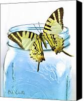 Glass Photo Canvas Prints - Butterfly on a blue jar Canvas Print by Bob Orsillo