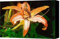 Butterfly On Flower Mixed Media Canvas Prints - Butterfly on Daylily Canvas Print by Chris Reed