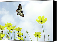 Beauty Canvas Prints - Butterfly With Flowers Canvas Print by Adegsm