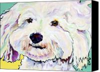 Puppy Canvas Prints - Buttons    Canvas Print by Pat Saunders-White