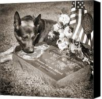 Dog Glass Canvas Prints - Buy a print. Show your support for Reading K9 Police.  Willow Street Pictures.  Canvas Print by Darren Modricker