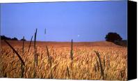 Wheat Canvas Prints - By the Highway 2 Canvas Print by Lyle Crump