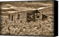 Log Cabin Photo Canvas Prints - Cabin Fever Canvas Print by Shane Bechler