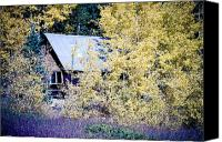 Autumn Photographs Canvas Prints - Cabin Hideaway Canvas Print by James Bo Insogna