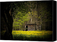 Sheds Canvas Prints - Cabin in the Flowers Canvas Print by Joyce L Kimble