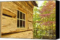 Cabin Window Canvas Prints - Cabin View Canvas Print by Lena Auxier